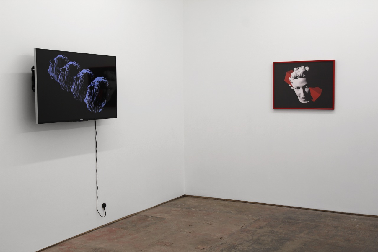 Julieta Aranda, installation view.