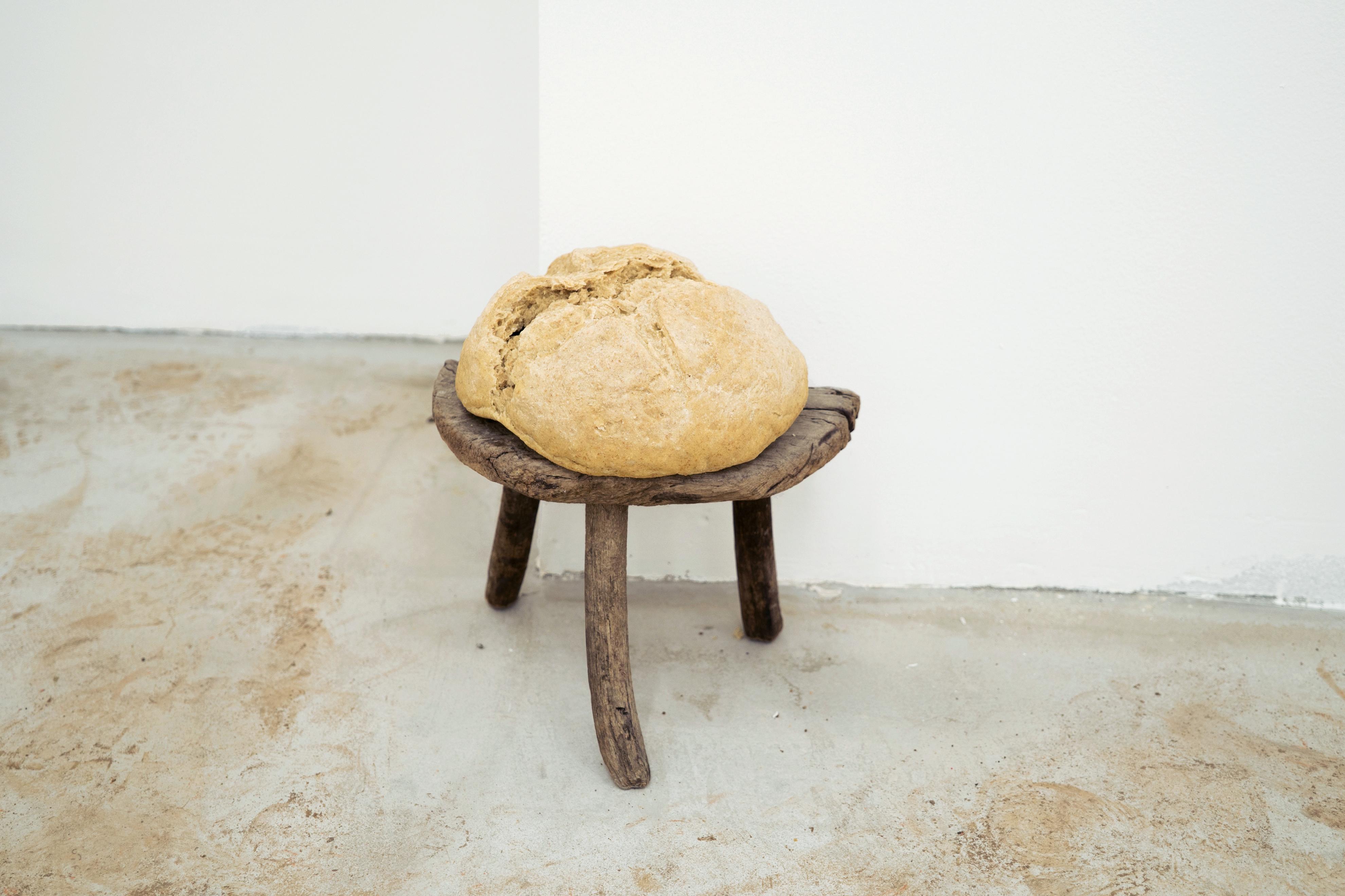Francisco Cordero-Oceguera, I'm Bread, 2016