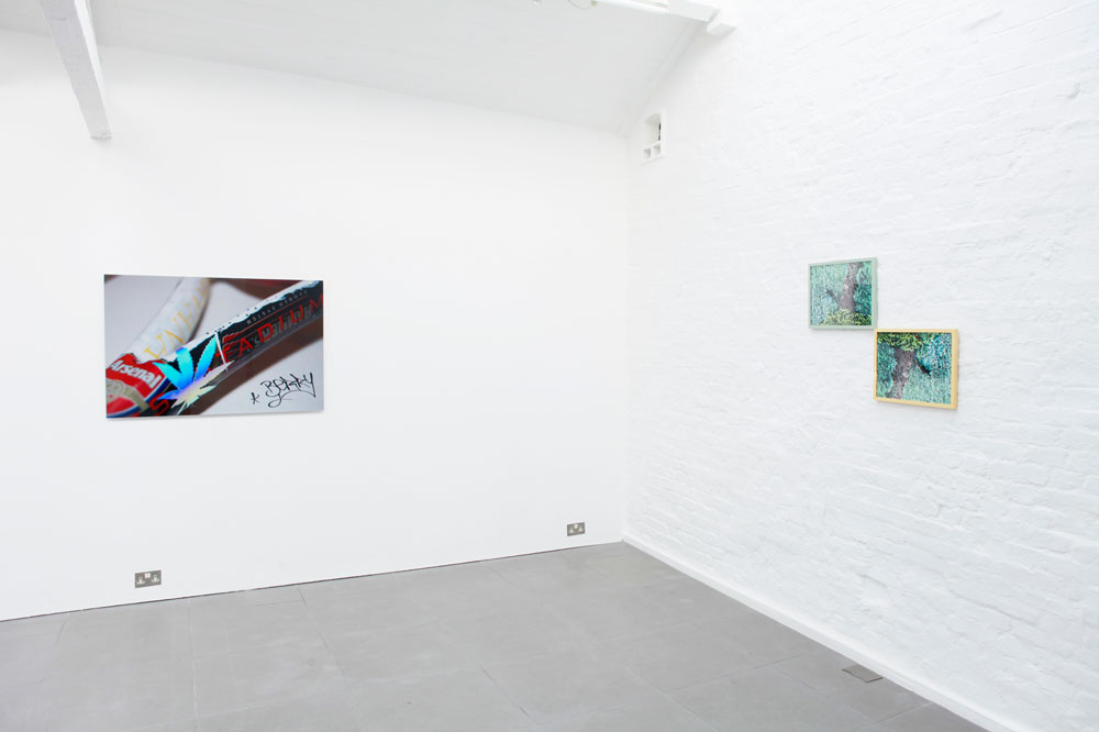 Chimera Q.t.e., installation view at Cell Projects